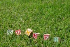Word 'summer'. Spelt in green grass Stock Photography