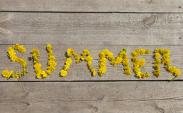 Word summer from dandelions on wooden boards Stock Photo