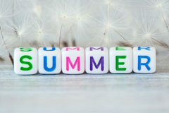 The word summer with flowers Royalty Free Stock Image