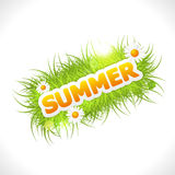 Word summer with fresh green grass Royalty Free Stock Photos