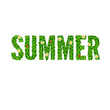 Word Summer with green leaves Royalty Free Stock Photo