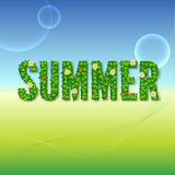 Word Summer with green leaves Stock Photo