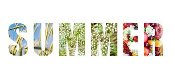 Word summer made of natural letters. Word `summer` made of letters with flowers, fruits and blue sky isolated on white background royalty free stock photos