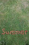 The Word Summer Spelt in Strawberries. This is an image of the word summer spelt in fresh, red strawberries against a background of green grass. The green stalks Royalty Free Stock Image