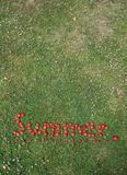 The Word Summer Spelt in Strawberries. This is an image of the word summer spelt in fresh, red strawberries against a background of green grass, and underlined Royalty Free Stock Images