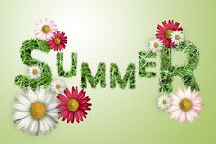 The word summer texture of a green grass, white and pink daisies on a green background,. Illustration Stock Images