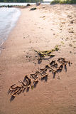 The word summer written in sand on beach Stock Images