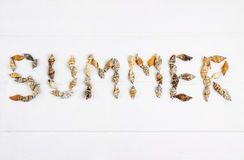 Word SUMMER written with shells on wooden. Background Stock Photography