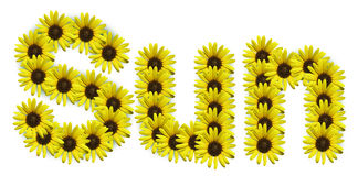 Word Sun. Spelled out with sunflowers Vector Illustration