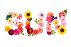 Word sun made of crepe paper flowers stock photography