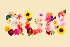 Word sun made of crepe paper flowers royalty free stock images