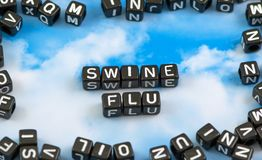 The word Swine flu royalty free stock images
