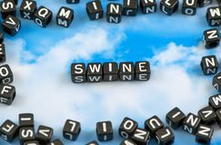 The word swine royalty free stock photo