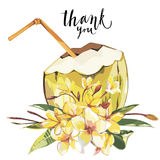 Word- Thank you. Vector coconut hand drawn sketch with plumeria flowers. Watercolor vector tropical food illustration. Isolated on white background Royalty Free Stock Image