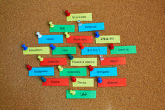 Word Thank you written in different languages. On colorful paper notes pinned to cork board stock photos