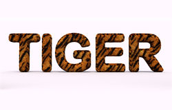 Word tiger fur alphabet. Royalty Free Stock Photo