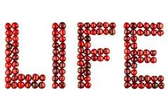 Word van bessenkersen - het leven Stock Fotografie