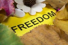 Word vrijheid royalty-vrije stock foto