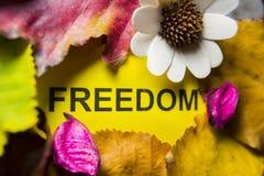 Word vrijheid royalty-vrije stock fotografie