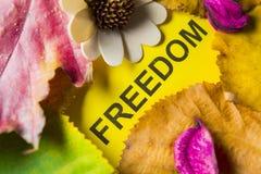 Word vrijheid stock afbeeldingen
