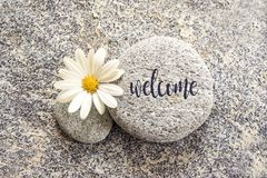 Word Welcome written on a stone with a daisy stock images