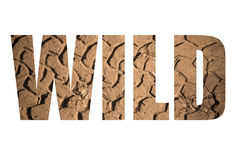 Word WILD over the imprint of the tire on wet sand. Toned Royalty Free Stock Images