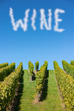 Word wine in cloud letter in the blue sky over a vineyard Stock Image
