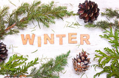 Word  winter against the background of tree branches, cones Stock Images