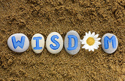 Word Wisdom spell out from stones with letters and flower Stock Images