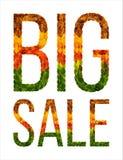 Word wordt geschreven isoleerde de Grote die verkoop met bladerenwit achtergrond, banner voor druk, creatieve illustratie van gek stock fotografie