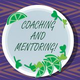 Word writing text Coaching And Mentoring. Business concept for capacity development process to achieve goals Cutouts of. Sliced Lime Wedge and Herb Leaves on stock illustration