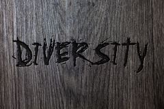 Word writing text Diversity. Business concept for Being Composed of different elements Diverse Variety Multiethnic Wooden wood bac royalty free stock photos