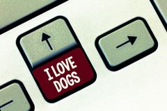 Word writing text I Love Dogs. Business concept for Have good feelings towards canines To like pets animals.  stock image