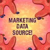 Word writing text Marketing Data Source. Business concept for connection set up to a database from a server Starfish stock illustration