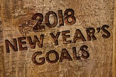 Word writing text 2018 New Years Goals. Business concept for resolution List of things you want to achieve Message banner wood inf. Ormation board post plywood stock image