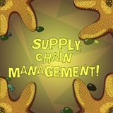 Word writing text Supply Chain Management. Business concept for analysisagement of the flow of goods and services vector illustration