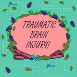 Word writing text Traumatic Brain Injury. Business concept for Insult to the brain from an external mechanical force. Wreath Made of Different Color Seeds royalty free illustration