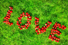 Word & x22;love& x22; made of strawberries on a green lawn Royalty Free Stock Photo