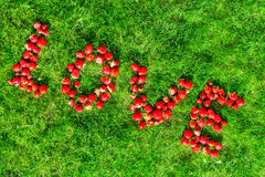 Word & x22;love& x22; made of strawberries on a green lawn Royalty Free Stock Image