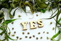 The word YES is laid out of wooden letters in the center of the frame from the dry leaves of marijuana and the grains of the canna royalty free stock images