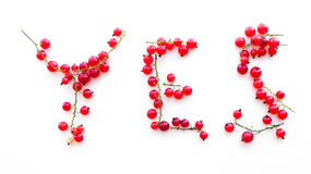 Word Yes from red currants,  Stock Photos