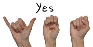 A word of yes shown by hands on an alphabet for the deaf mute on. A word of yes shown by hands in English on an alphabet for the deaf mute on a white background royalty free stock image