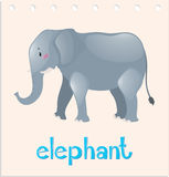 Wordcard animal avec l'éléphant Photos stock
