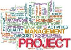 Wordcloud de gestion des projets Photo libre de droits