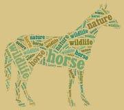 Wordcloud del caballo Fotografía de archivo