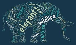 Wordcloud of elefant Royalty Free Stock Images