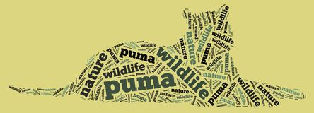Wordcloud of puma Stock Photography