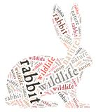Wordcloud of rabbit Stock Photography
