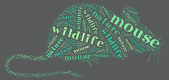 Wordcloud of rat Stock Photography