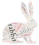 Wordcloud van konijn Stock Fotografie